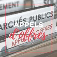 assistance appels d'offres, candidature, offre, veille, mémoire technique, marchés publics