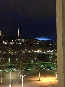 Vue sur la colline de Fourvière Salle lyon 2