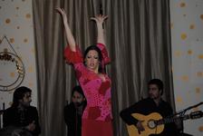 flamenko v madride deshevo