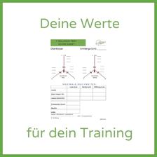 Robert Rath composite score YBT y balance test Personal Training Fitness Assessment Functional Movement Screen Rosenheim Chiemsee