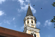 Neue Brutplätze in Odelzhausen