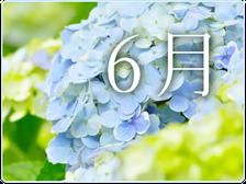 来月の開催日