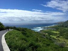 ハワイ オアフ島 タクシー観光 専用車貸切チャーター マカプウ岬 マカプウライトハウストレイル ハイキングコース