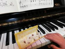 どれみ音楽教室 さくら ピアノ