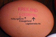 Was bedeutet die Nummer auf dem Ei?