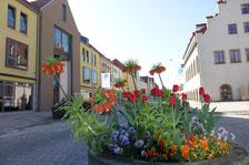 Fotos: Dr. Franz Janka/Stadt Neumarkt