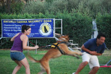 15 minutos con Security Dogs Madrid, pinchando en la foto.