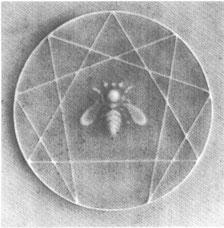Naranjo 2004. Enneagramm-Symbol