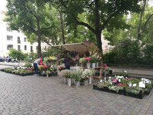 Top 5 weekly organic market in Berlin