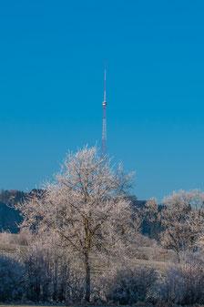 Bild: Martin Schleger, Neudorf 01.01.2017