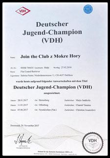 Deutscher Jugend-Champion VDH
