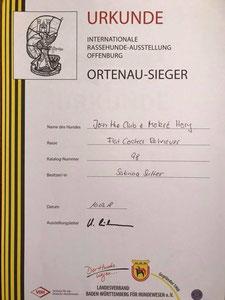 Ortenau-Sieger 2018