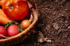 野菜の土や花の土や花壇の土の写真