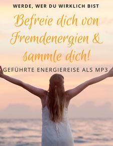 Logo Energetische Sammlung