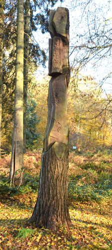 Arbre sculpté-forêt de Crécy