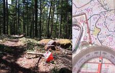 イベントセンター内の森:常設フラッグとオリエンテーリンマップ