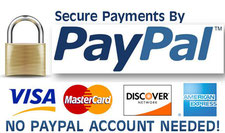 Payment methods PayPal (including credit card, debit card, and bank transfer)