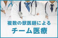 複数の獣医師によるチーム医療