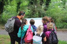 Somme Groupes - Séjour - Journée - Somme - Groupes - Agence de voyages - Réceptif - Baie de Somme - Exploration - Parcours - Insolites - Guide - Défis - Chasse au trésor - Cadeaux -  Randonnée - Découverte - Région - Enfants - Ecole - Scolaire