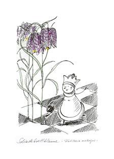 012 - Schachbrettblume