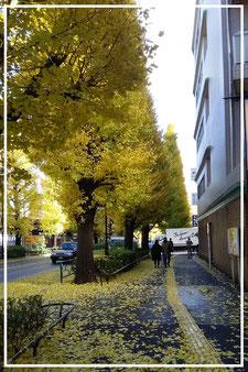 むつみ会から千駄ヶ谷駅へ(秋)