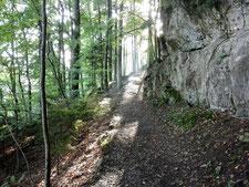 Meditatives Wandern Zürich und Umgebung