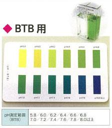 カラーチャートBTB