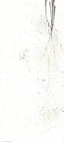 dry flower (2014)