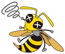 危険生物 スズメバチ類 ミツバチ類 アシナガバチ類 ドバチ類