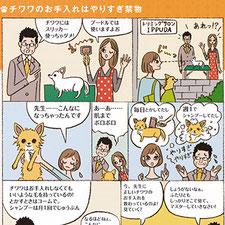 ナツメ社『チワワの飼い方しつけお手入れのすべて』犬 チワワ イラスト コミック 漫画