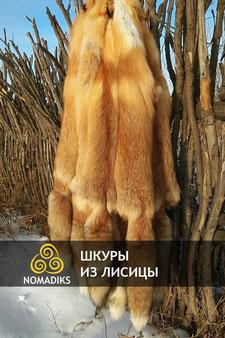 шкура из лисицы, шкура из лисы, шкура из лисицы алматы, шкура из лисы казахстан, мех лисы, мех из лисицы, лисица, шкуры из лисицы, лисица мех, шкура лиса россия