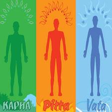 Основы йога-терапии по дошам