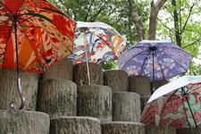 リメイク日傘 Casa de Paraguas