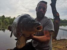 acrocarpe étang pêche carpe no-kill Somme