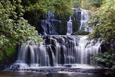 Neuseeland, wasserfall, waterfall, wald, wods, simply picture