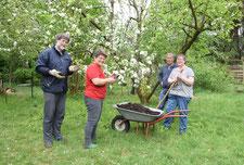 Foto: (A. Bückner) Die NABU-Gartengruppe im Einsatz