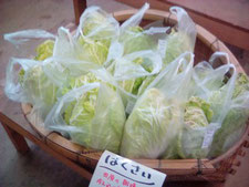 田原やま里市場 野菜 米 茶 エリンギ ぴよたま
