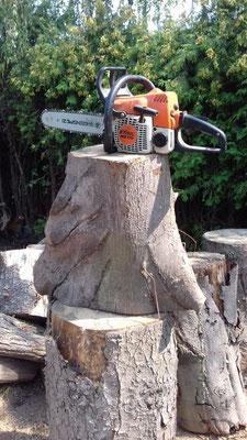 Vom unbehandelten Holzstamm...