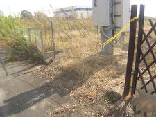 フェンスの取り替え:工事前写真