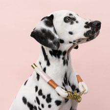 hundsoadli Baumwolle Halsband rosa