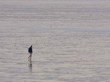 Wanderer im Watt