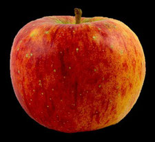 echter Apfel