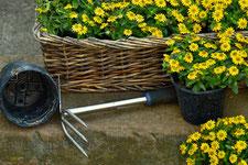 Pflege von Gärten und Gräbern