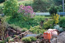 Anlegen von naturnahen Gärten