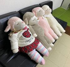 前川医院のマスコットガール、白・ピンク・茶色の羊のぬいぐるみの写真です。