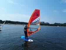 ウインドサーフィン 海の公園 スピードウォール 神奈川 横浜 初心者 体験