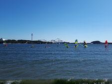 ウインドサーフィン SUP 海の公園 スピードウォール 横浜 神奈川 初心者 体験 スクール