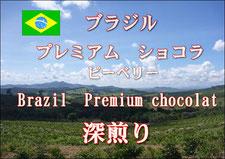 人気No.5 ブラジル プレミアムショコラ ピーベリー 深煎り