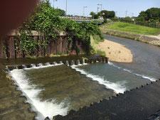 柳瀬川旧合流点