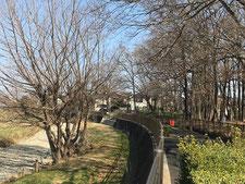 大沼田橋(親水階段)